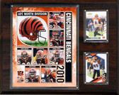 NFL Cincinnati Bengals Licensed 2010 Score Team Set and Favorite Player Trading Card Pack Plus Storage Album