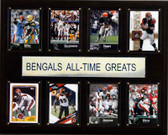 "NFL 12""x15"" Cincinnati Bengals All-Time Greats Plaque"