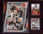 "NFL 12""x15"" Cleveland Browns 2014 Team Plaque"