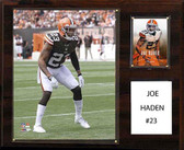 "NFL 12""x15"" Joe Haden Cleveland Browns Player Plaque"