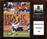 "NFL 12""x15"" Demaryius Thomas Denver Broncos Player Plaque"