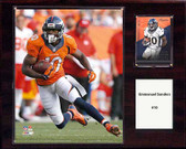 "NFL 12""x15"" Emmanuel Sanders Denver Broncos Player Plaque"