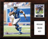 "NFL 12""x15"" Reggie Bush Detroit Lions Player Plaque"