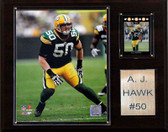 "NFL 12""x15"" A.J. Hawk Green Bay Packers Player Plaque"