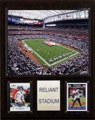 "NFL 12""x15"" Reliant Stadium Stadium Plaque"