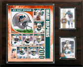 "NFL 12""x15"" Miami Dolphins 2010 Team Plaque"