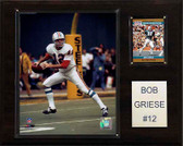 "NFL 12""x15"" Bob Griese Miami Dolphins Player Plaque"