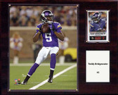 "NFL 12""x15"" Teddy Bridgewater Minnesota Vikings Player Plaque"