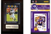 NFL Minnesota Vikings Fan Pack