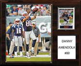"NFL 12""x15"" Danny Amendola New England Patriots Player Plaque"