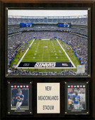 "NFL 12""x15"" Meadowlands Stadium Stadium Plaque"