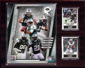 "NFL 12""x15"" New York Jets 2014 Team Plaque"