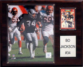 "NFL 12""x15"" Bo Jackson Oakland Raiders Player Plaque"