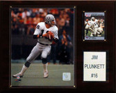 "NFL 12""x15"" Jim Plunkett Oakland Raiders Player Plaque"