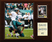 "NFL 12""x15"" David Akers Philadelphia Eagles Player Plaque"