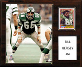 "NFL 12""x15"" Bill Bergey Philadelphia Eagles Player Plaque"