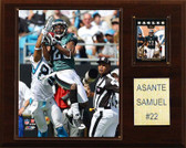 "NFL 12""x15"" Asante Samuel Philadelphia Eagles Player Plaque"