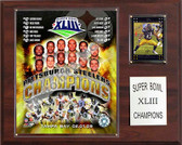 "NFL 12""x15"" Pittsburgh Steelers Super Bowl XLIII Champions Plaque"