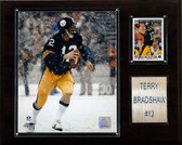 """NFL 12""""x15"""" Terry Bradshaw Pittsburgh Steelers Player Plaque"""