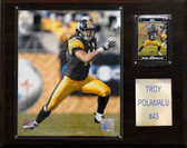 """NFL 12""""x15"""" Troy Polamalu Pittsburgh Steelers Player Plaque"""