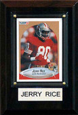 "NFL 4""x6"" Jerry Rice San Francisco 49ers Player Plaque"