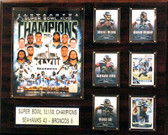 "NFL 16""x20"" Seattle Seahawks Super Bowl XLVIII Champions Plaque"