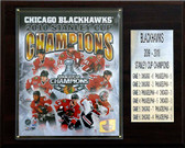 "NHL 12""x15"" Chicago Blackhawks 2010 Stanley Cup Champions Plaque"