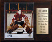 "NHL 12""x15"" Tony Esposito Chicago Blackhawks Career Stat Plaque"