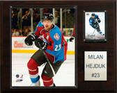 "NHL 12""x15"" Milan Hejduk Colorado Avalanche Player Plaque"