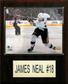 "NHL 12""x15"" James Neal Pittsburgh Penguins Player Plaque"