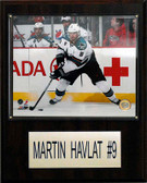 "NHL 12""x15"" Martin Havlat San Jose Sharks Player Plaque"
