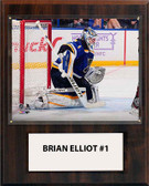 "NHL 12""x15"" Brian Elliott St. Louis Blues Player Plaque"