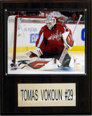 "NHL 12""x15"" Tomas Vokoun Washington Capitals Player Plaque"