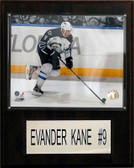 "NHL 12""x15"" Evander Kane Winnipeg Jets Player Plaque"