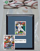 MLB Detroit Tigers Party Favor With 6x7 Mat and Frame