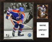 "NHL 12""x15"" Wayne Gretzky Edmonton Oilers Player Plaque"