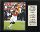 "12""x15 Payton Manning Denver Broncos Career Stat Plaque"