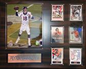 """NFL16""""x20"""" Payton Manning Denver Broncos Plaque"""