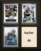 "NFL 8""x10"" Greg Olsen Carolina Panthers Three Card Plaque"