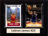 "NBA 6""X8"" Lebron James Cleveland Cavaliers Two Card Plaque"