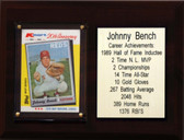 "MLB 6""X8"" Johnny Bench Cincinnati Reds Career Stat Plaque"