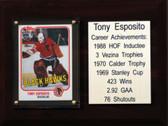 "NHL 6""X8"" Tony Esposito Chicago Blackhawks Career Stat Plaque"
