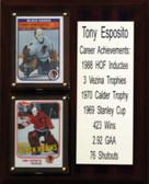"NHL 8""X10"" Tony Esposito Chicago Blackhawks Career Stat Plaque"