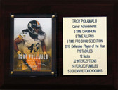 "NFL 6""X8"" Troy Polamalu Pittsburgh Steelers Career Stat Plaque"
