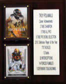 "NFL 8""X10"" Troy Polamalu Pittsburgh Steelers Career Stat Plaque"