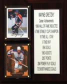 "NHL 8""X10"" Wayne Gretzky Edmonton Oilers Career Stat Plaque"