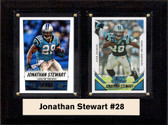 "NFL 6""X8"" Jonathan Stewart Carolina Panthers Two Card Plaque"