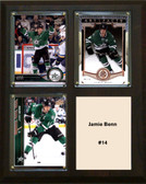 "NHL 8""x10"" Jamie Benn Dallas Stars Three Card Plaque"