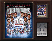 "NFL 12""x15"" New England Patriots Super Bowl XLI Champions Plaque"