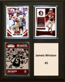 "NCAA 8""X10"" Jameis Winston Florida State Seminoles Three Card Plaque"
